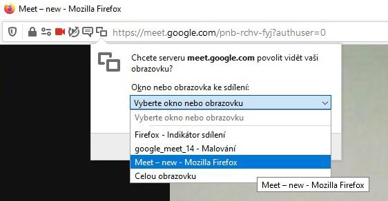 Google Meet 15